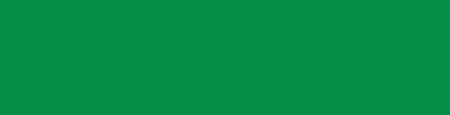 boston_fig_logo